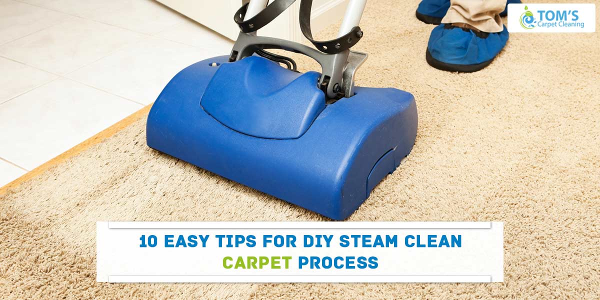 10 Easy Tips For DIY Steam Clean Carpet Process