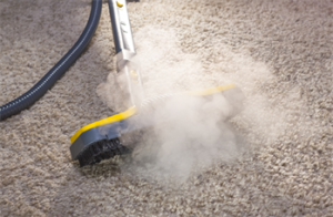 Carpet Stream Cleaning Service