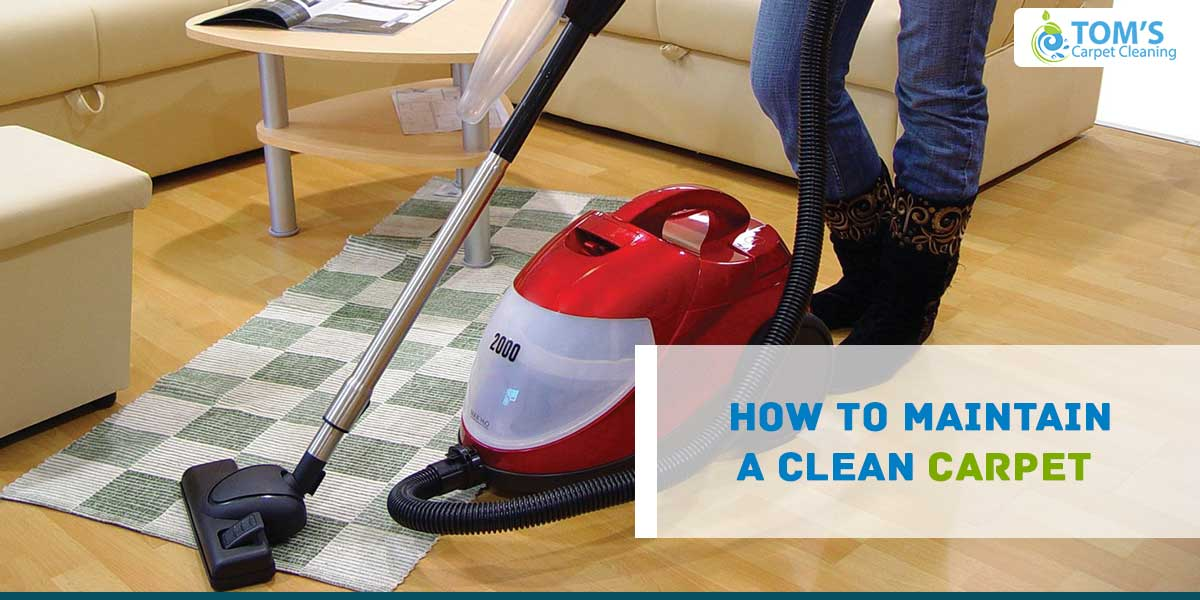 How to Maintain a Clean Carpet
