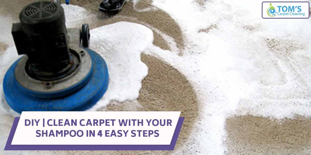 DIY | Clean Carpet With Your Shampoo in 4 Easy Steps