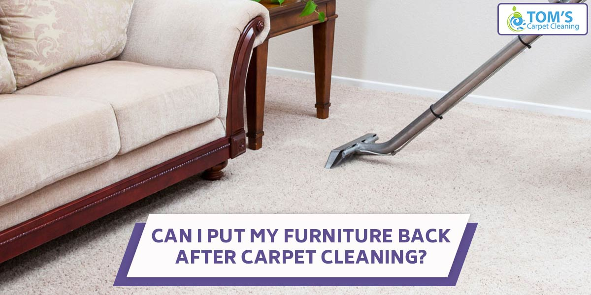 Can I Put My Furniture Back After Carpet Cleaning