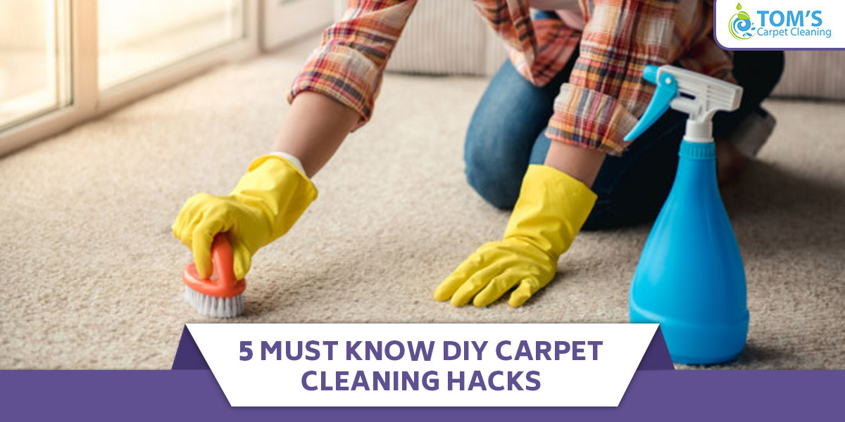 5 Must-Know DIY Carpet Cleaning Hacks