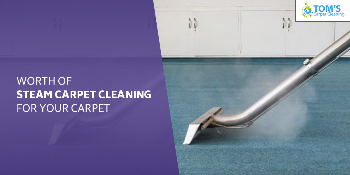 Worth of Steam Carpet Cleaning for Your Carpet