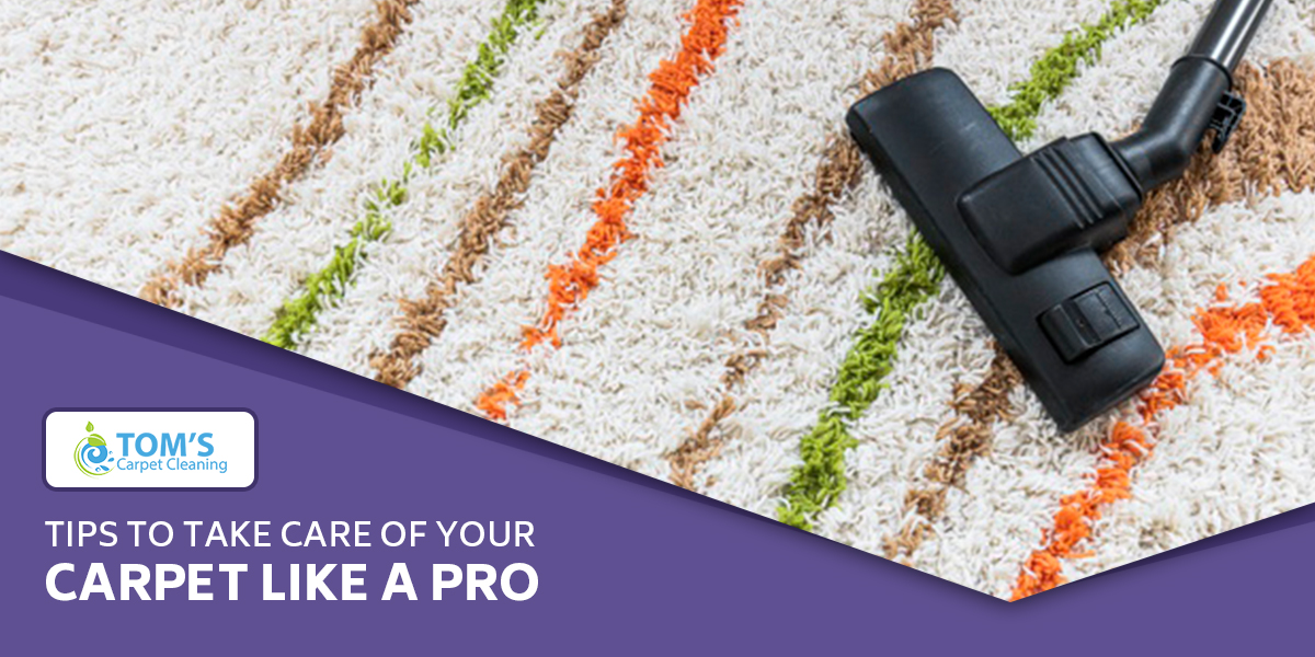 Tips to Take Care of Your Carpet Like a Pro