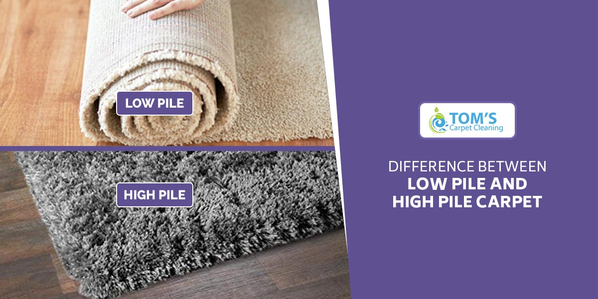 Difference Between Low Pile and High Pile Carpet