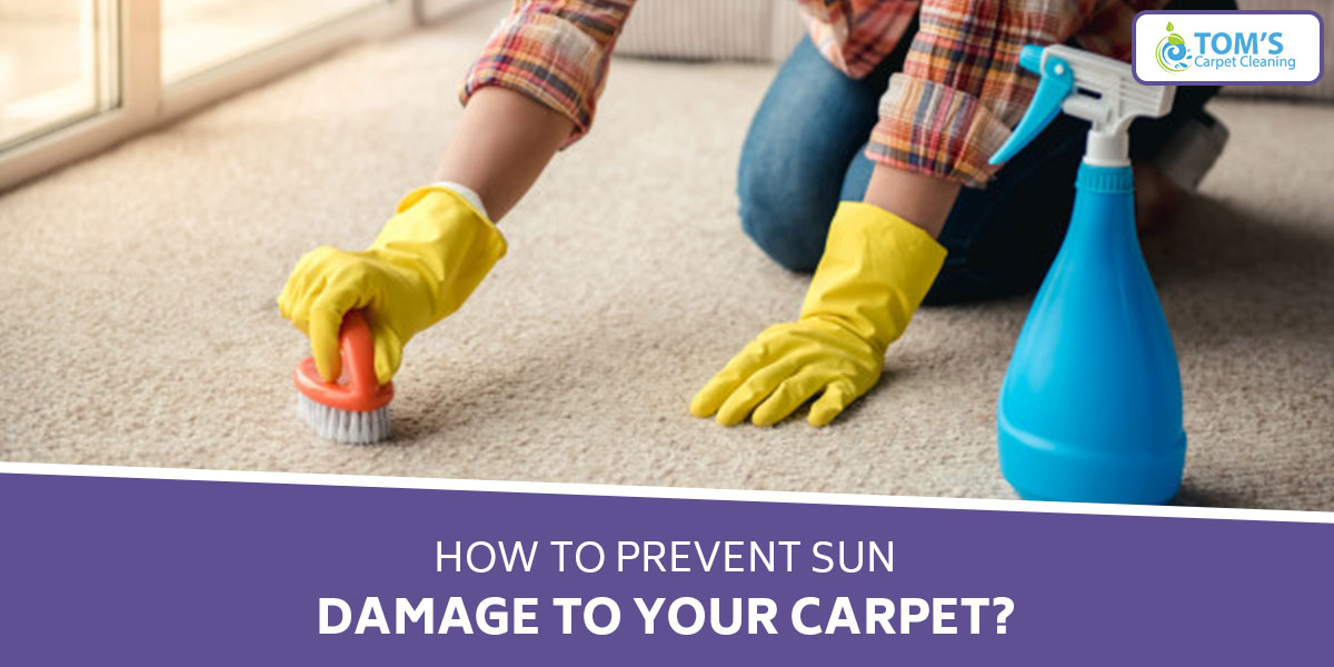 How to Prevent Sun Damage to Your Carpet?