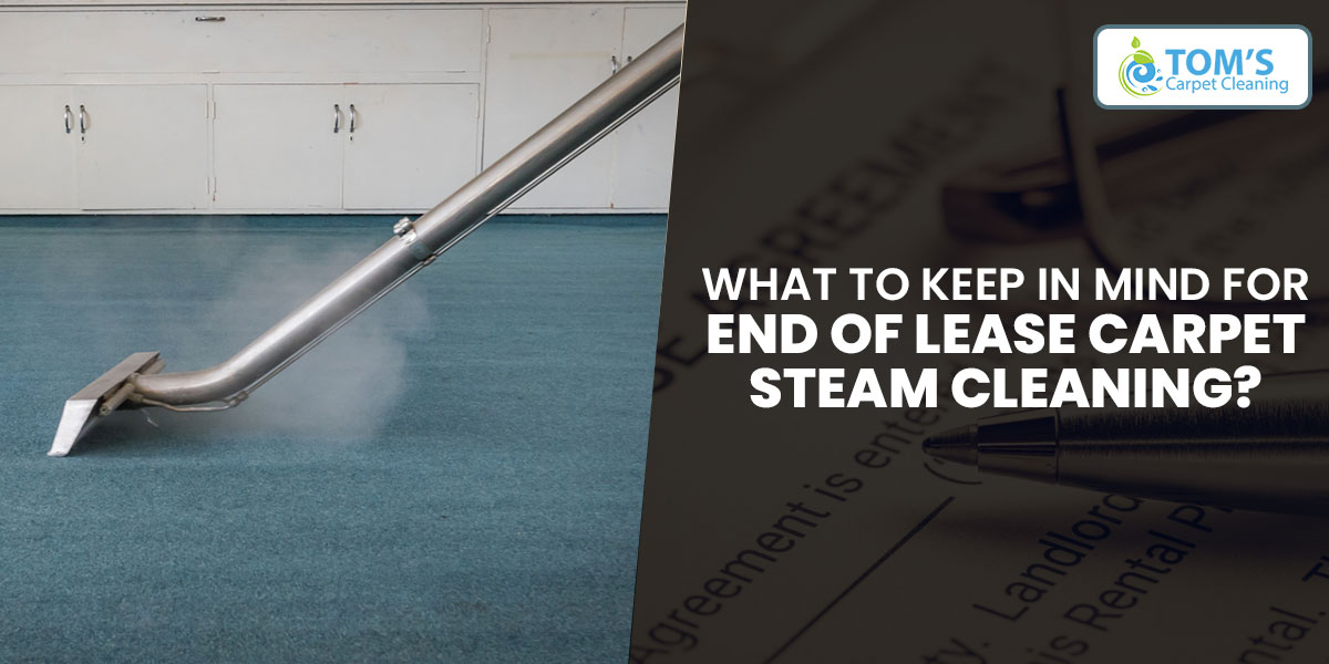 What to Keep in Mind for End of Lease Carpet Steam Cleaning?