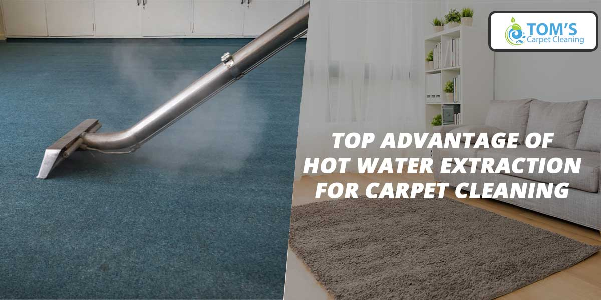 Top Advantage of Hot Water Extraction for Carpet Cleaning