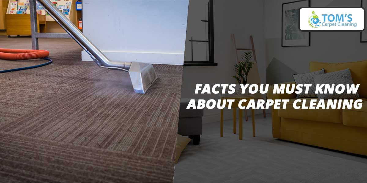 Facts You Must Know About Carpet Cleaning