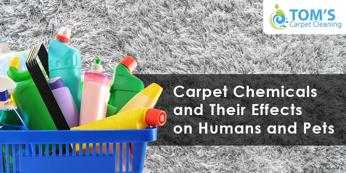 Carpet Chemicals and Their Effects on Humans and Pets