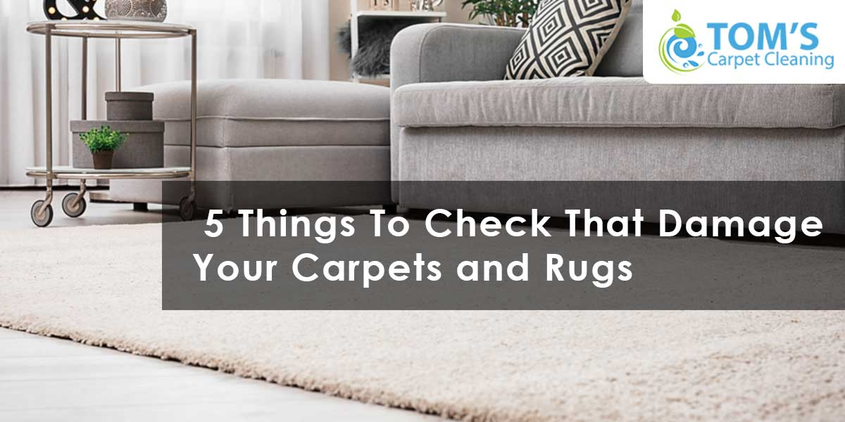 5 Things To Check That Damage Your Carpets and Rugs