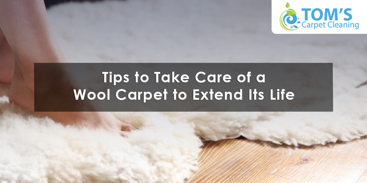 Tips to Take Care of a Wool Carpet to Extend Its Life